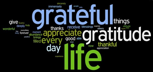 Attitude of Gratitude - Girls on the Run Capital Region Donation Page